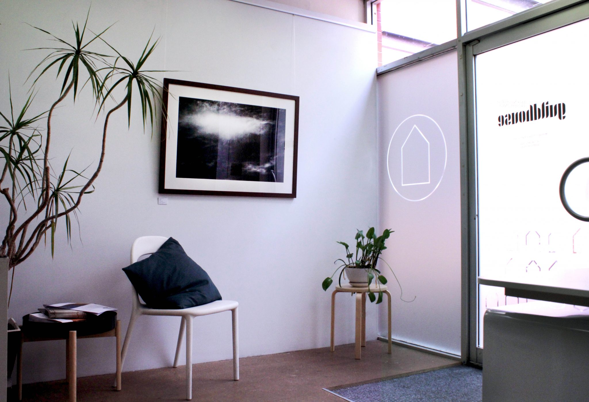 A photograph of the Guildhouse office space, with plants in the left and right side of the image, with a dark artwork in the centre